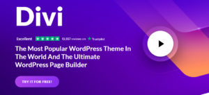 How to make a website with a Divi theme